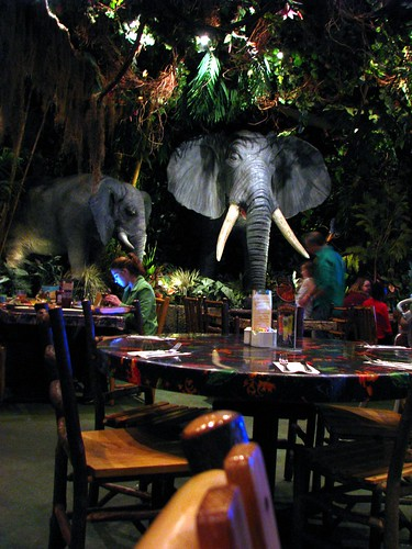 Rainforest Cafe Arizona