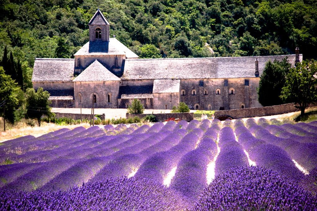 Abadia de Senanque, viagem, agência de viagem Porto Alegre, viagem internacional, roteiros europeus, férias na Europa, França, Provence, Provença, Languedoc