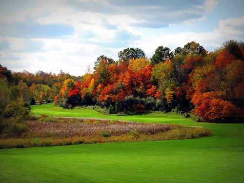 Fall Golf | by Jim B L