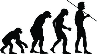Human Evolution? | by bryanwright5@gmail.com
