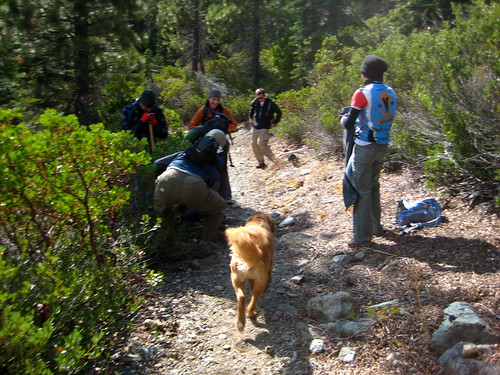 Trail Daze | by Sierra Buttes Trail Stewardship