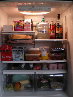 Refrigerator - After | by Average Jane