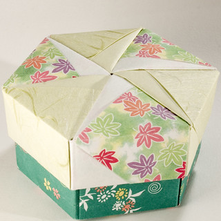 Decorative Hexagonal Origami Gift Box with Lid: # 14 | by Dominic's pics