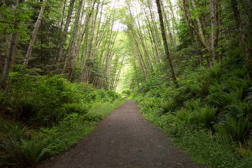 Galloping Goose Trail Near Sooke, BC | by microbe