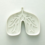Design Blog Sociale - 8 July 2008 - Lung Ashtray designed by Chi-Ja Ling from Finding Cheska studio