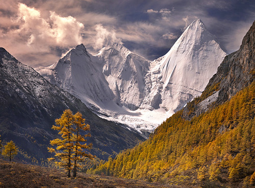 Fall in the Himalaya by Michael Anderson | by AndersonImages