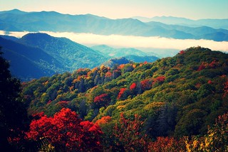 Great Smoky Mountains | by Leo Hohmann