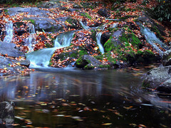 Cades Cove Waterfall | by Lara's Pixels