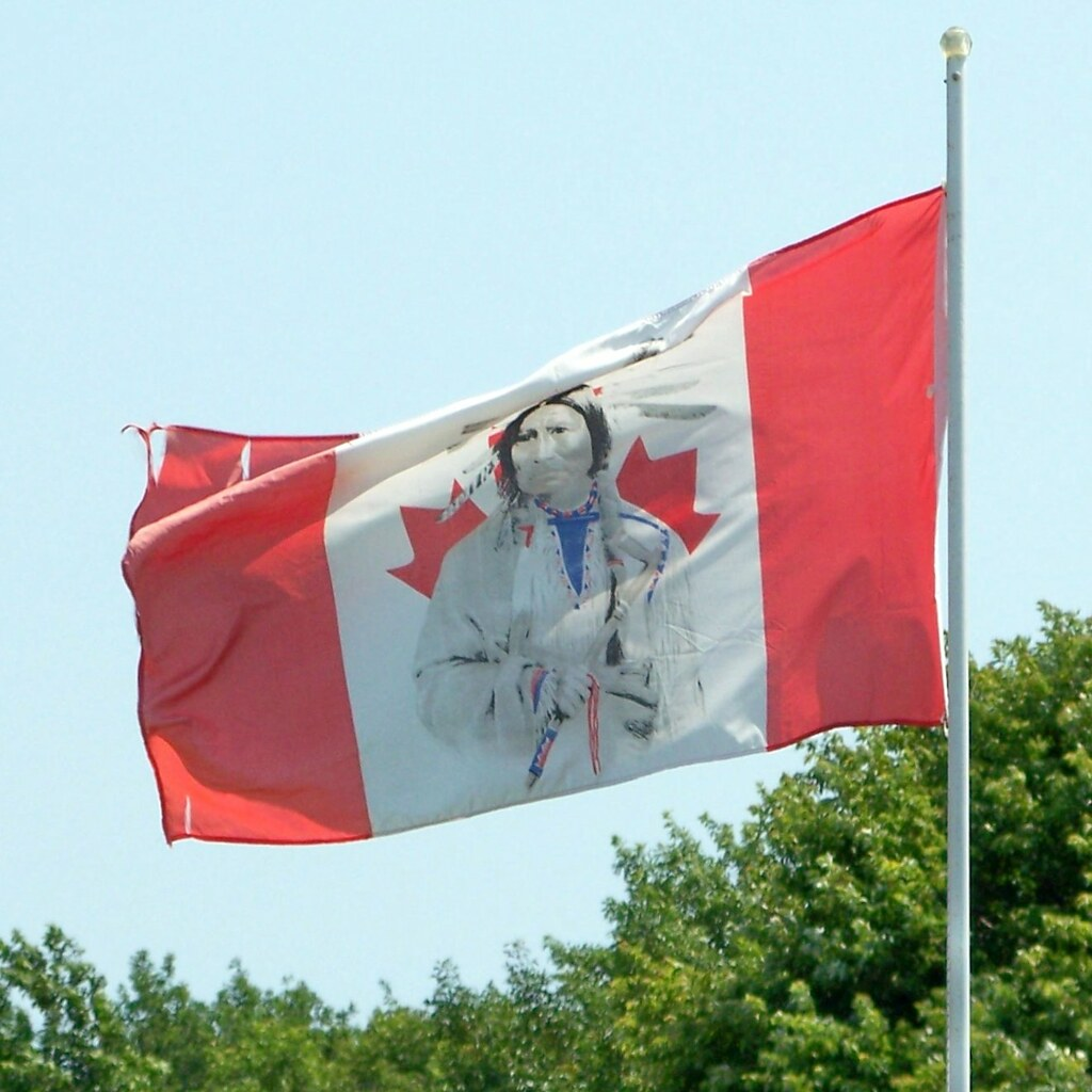 defaced canadian flag the word