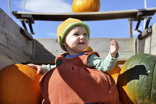 Fall Festival at Anderson Farms | by Garden Hoe