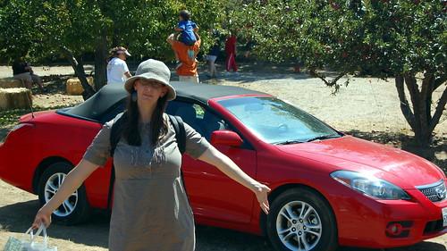 Weekend Car Rental Best Deal Minivan Plano Tx