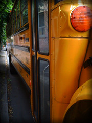 School Bus | by nikki.jane