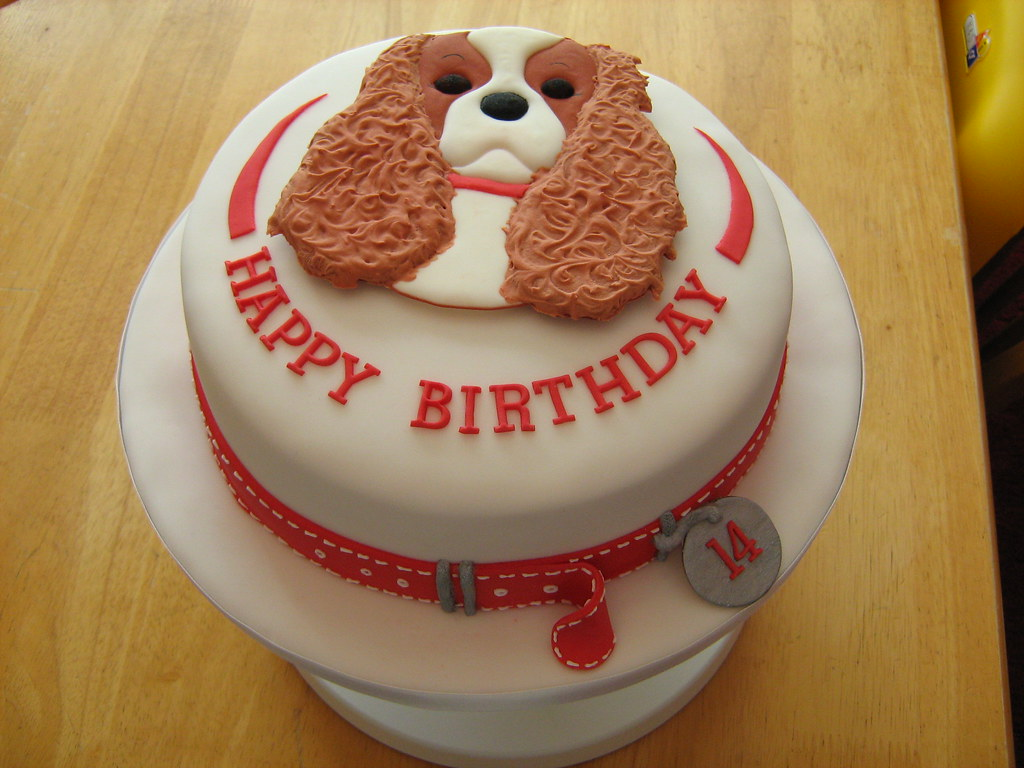 King Charles Spaniel and Red Collar Covered in sugarpaste Flickr