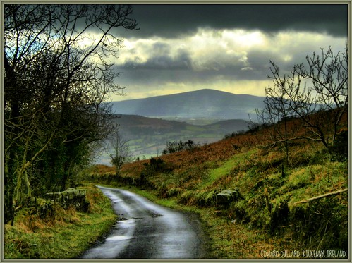 COUNTRY ROAD | by Edward Dullard Photography. Kilkenny, Ireland.