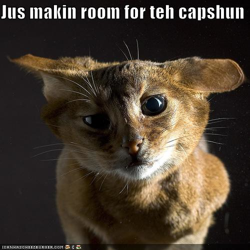 funny-pictures-cat-makes-room-for-caption | by zebedee.zebedee