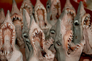 Shark Heads | by Anna Margittai