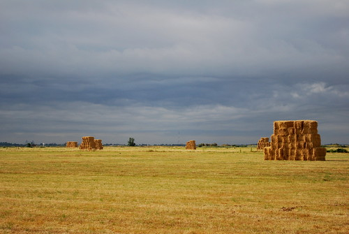 Hay Bales | by goingslowly