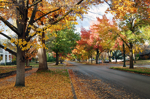 Autumn in Boise | by Roadsidepictures