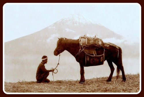 JAPANESE PACK-HORSE REFUSES TO BUDGE -- Ruins a Perfectly Good Shot of Mt. Fuji | by Okinawa Soba (Rob)