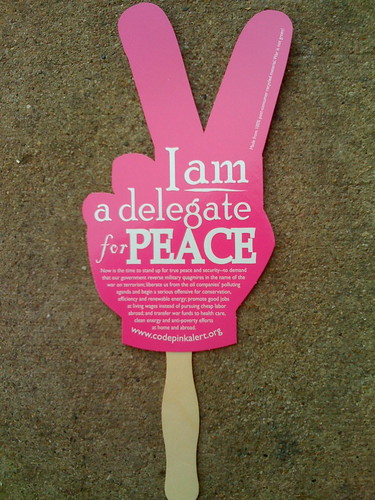 CODEPINK's Delegate for Peace fans for the DNC and RNC | by Linda Milazzo