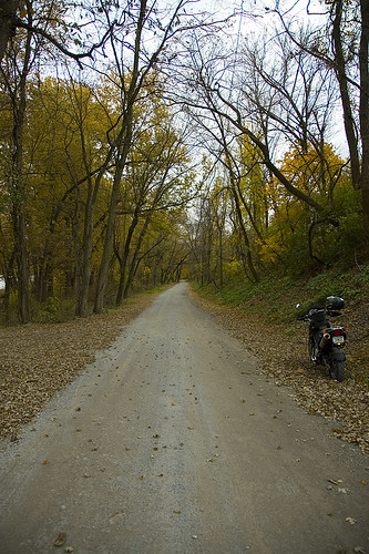 Gut Road I Took A Ride At Lunch Today This Is An