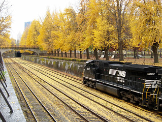 Pittsburgh PA: Black & Gold - Northside Train & Ginkgo Trees | by KatrencikPhotoArchives