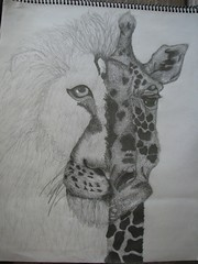 Lion vs. Giraffe. | by pg!