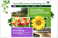 Texas Hill Country Web Design | by Parscale Media