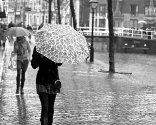Umbrella's | by bartwe