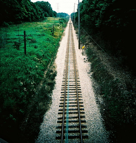 Railroad weeds | by kevin dooley