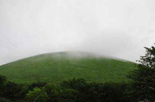 fog_16