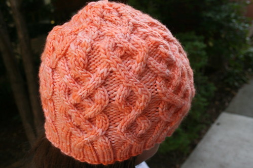 Malabrigo Habitat in Apricot | by add_knitter