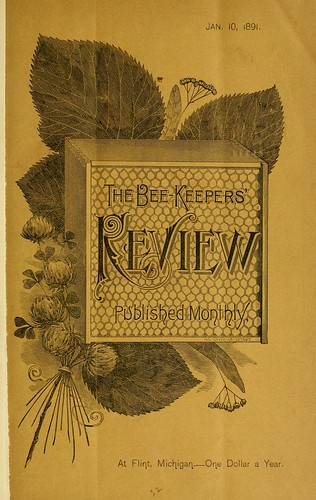 Bee Keepers Review | by the snail and the cyclops