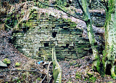Ruin of 17th Century Water Powered Fulling Mill | by emms76