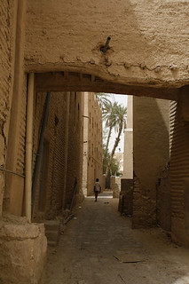 Yemen, Tarim Yemen