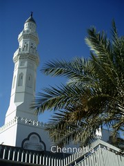 Minaret and Palms | by Chennette