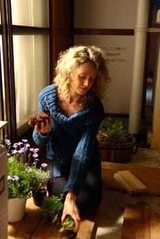 How To Grow Herbs With Grow Lights 300W