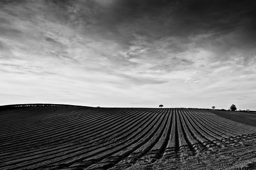 Ridge & Furrow (B&W) | by ROB KNIGHT photography