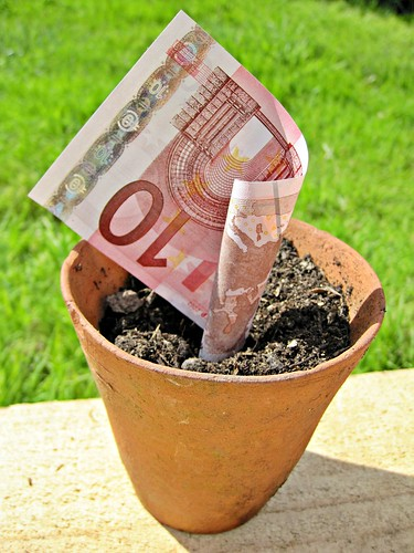 10 Euro Note in a plant pot | by Images_of_Money