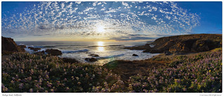 Bodega Head Pano #1 | by Josh Sommers