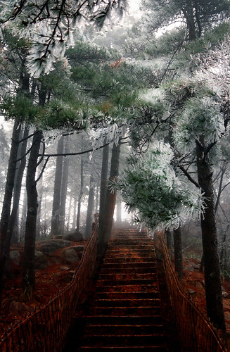 0994 A Stairway to Heaven--Huangshan , Anhui Province , China | by ngchongkin