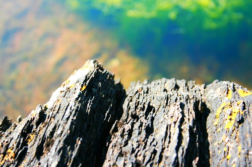 Rock Pool Saturated | by rosewoodoil