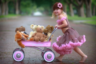 teddy bear parade going FAST! | by Charmy Photography