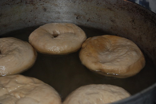 Peter Reinhart's Bagels - Boil | I made Bagels from Peter Re ...