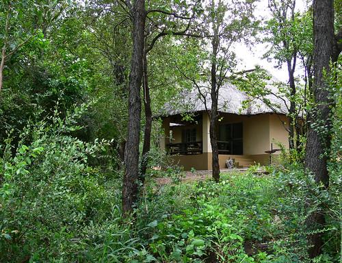 Sirheni Bush Camp, Bungalow no 13   Blogged at gwenz ...
