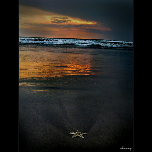 Another Star | by harven™