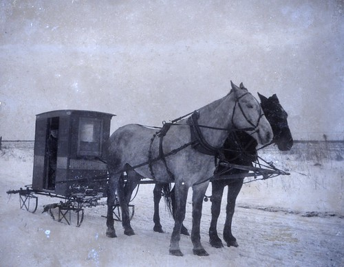 Rural Letter Carrier in Sleigh | by Smithsonian Institution