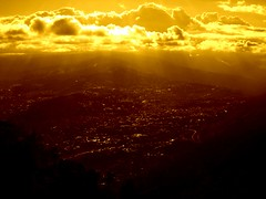 Caracas in Sepia | by sue'sie