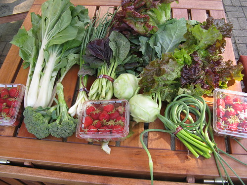CSA box #4 | by katbaro