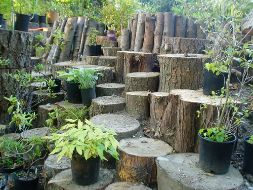Log Garden | by RHR Horticulture